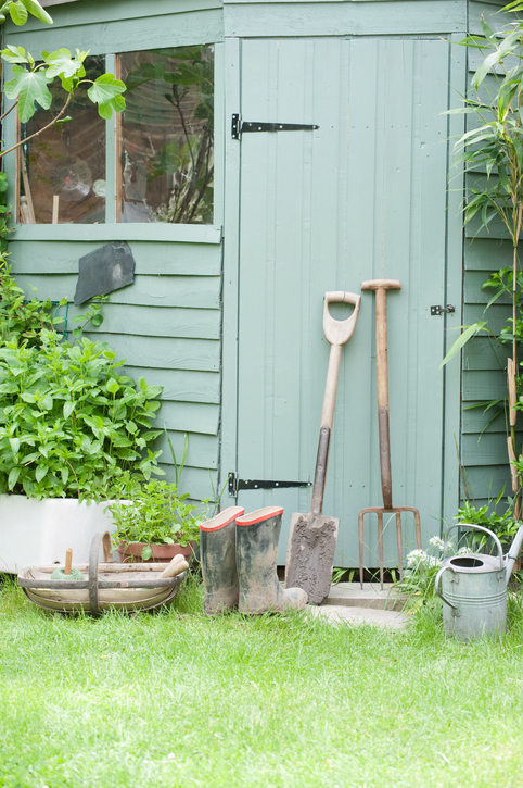 garden tools leaning on a toll shed