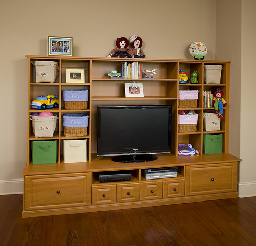 Custom entertainment center organizer Philadelphia